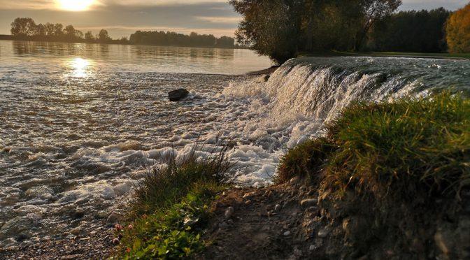 Flussbauprojekt in Au an der Donau